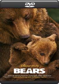 Bears [5913]
