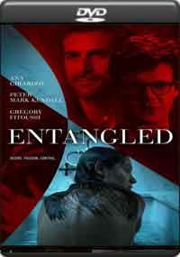 Entangled [ 8336 ]