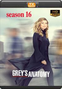 Greys Anatomy Season 16 [Episode 5,6,7,8]