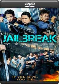 Jailbreak [ 7972 ]