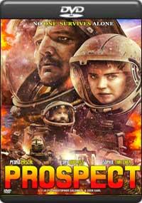 Prospect [ 8081 ]