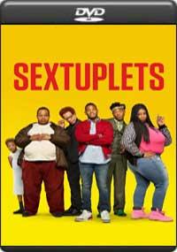 Sextuplets [ 8272 ]