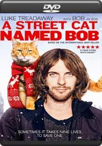 A Street Cat Named Bob [7107]