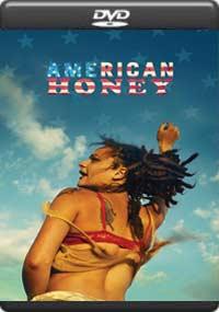 American Honey [7032]