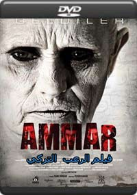 Ammar [5935]