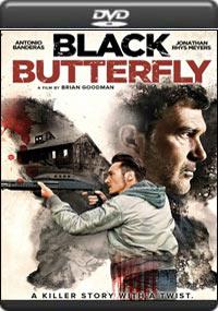 Black Butterfly [7275]