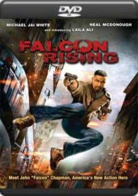 Falcon Rising [5988]