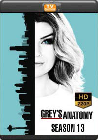Grey's Anatomy : Season 13 ( 21,22,23,24, The Final )