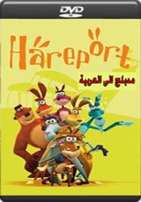 Hareport [C-1229]