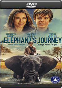 An Elephant's Journey [ 7956 ]