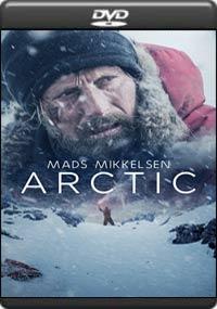 Arctic [ 8152 ]