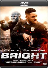 Bright [ 7541 ]