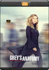 Greys Anatomy Season 16 [Episode 1,2,3,4]