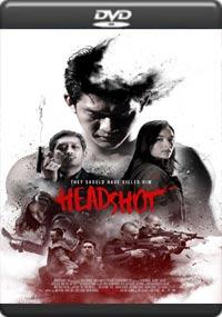 Headshot [7140]