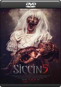 Siccin 5 [ 8247 ]