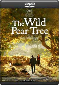 The Wild Pear Tree [ 8038 ]