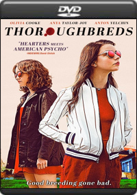 Thoroughbreds [ 7764 ]
