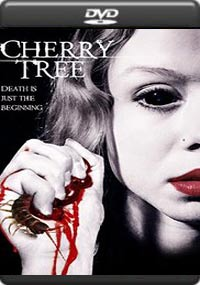 Cherry Tree [6754]