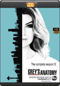 Greys Anatomy The Complete Season 13