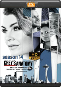 Grey's Anatomy Season 14 [Episode 17,18,19,20]