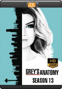 Grey's Anatomy : Season 13 (17,18,19,20 )