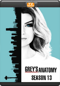 Grey's Anatomy Season 13 [Episode 1,2,3,4]