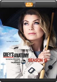 Grey's Anatomy Season 12 [Episode 5,6,7,8]