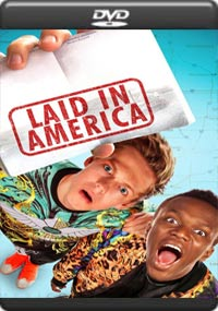 Laid in America [6961]