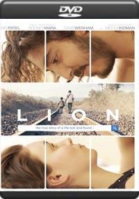 Lion [7050]