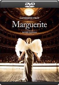 Marguerite [6929]