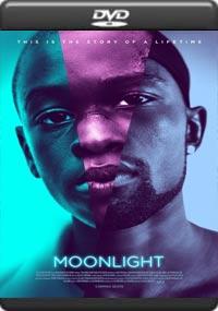 Moonlight [7042]