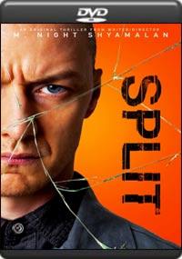 Split [7199]
